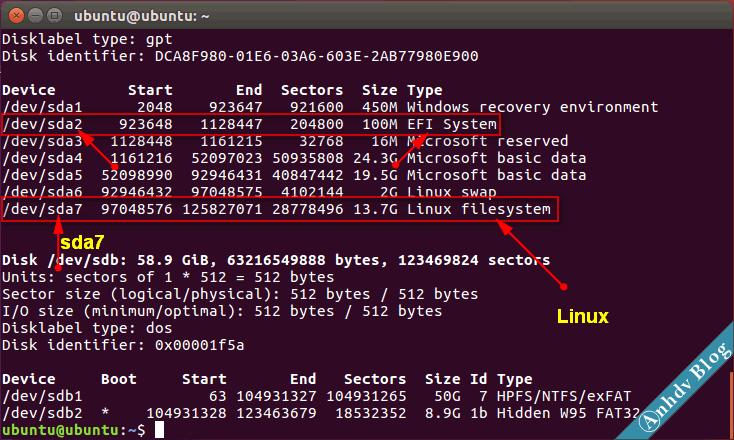Tìm phân vùng EFI và Ubuntu