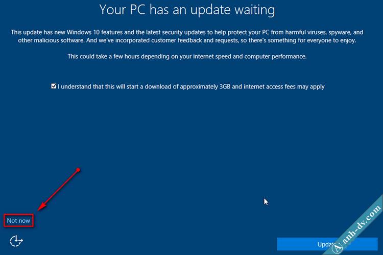 Not now để bỏ qua tải bản windows 10 udpate mới